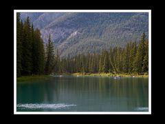 Alberta 216 Canmore