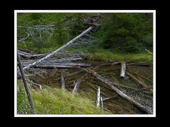 Alberta 241 Shadow Lake Lodge