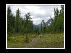 Alberta 247 Shadow Lake Lodge