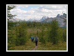 Alberta 260 Shadow Lake Lodge