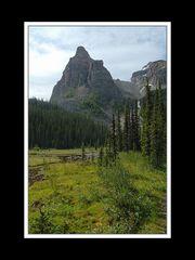 Alberta 264 Shadow Lake Lodge