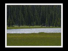 Alberta 267 Shadow Lake Lodge