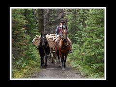 Alberta 301 Shadow Lake Lodge