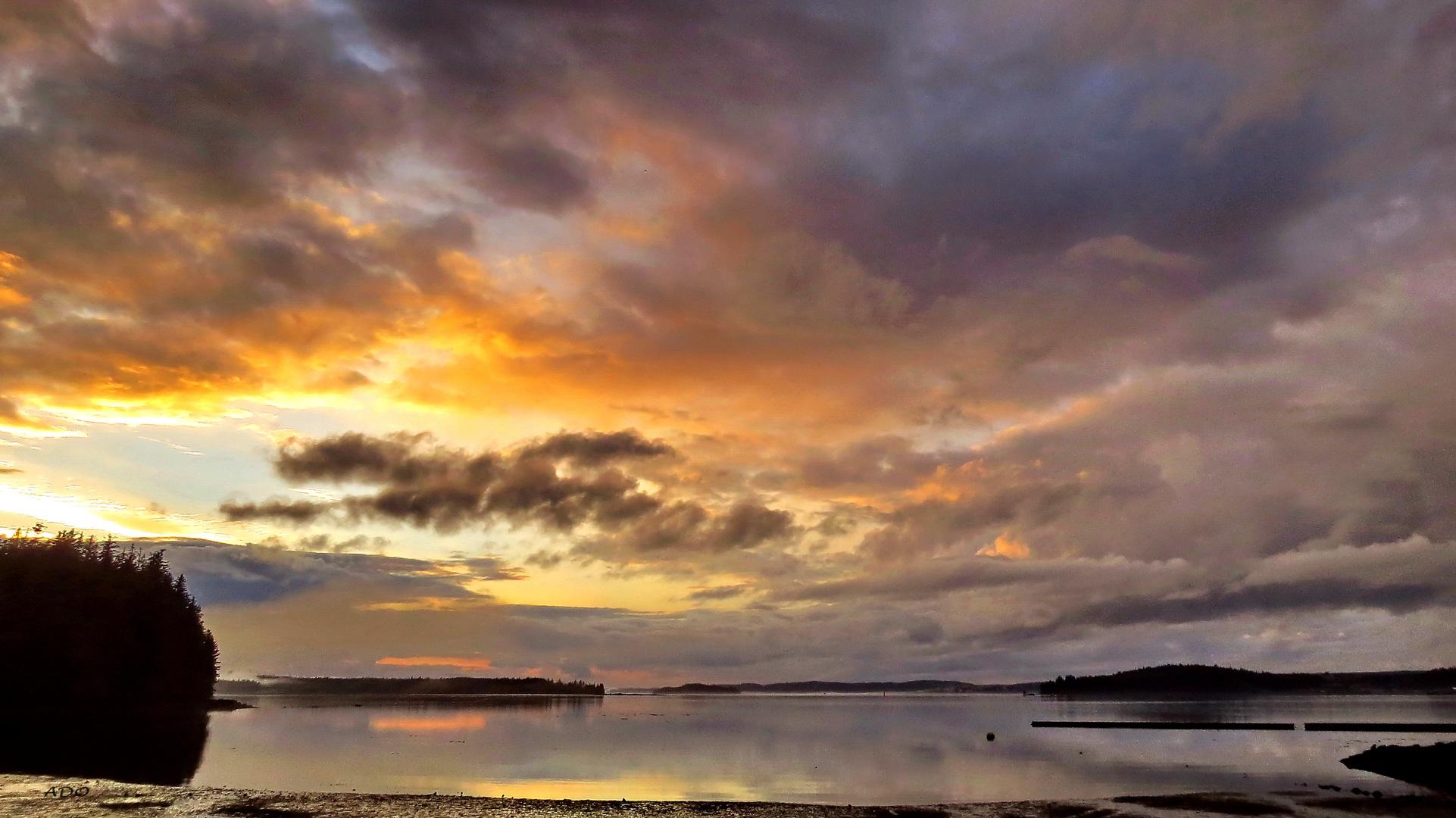 Alder Bay Sky