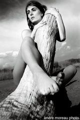 Alessia Marseglia nude http://www.andremoreau.it