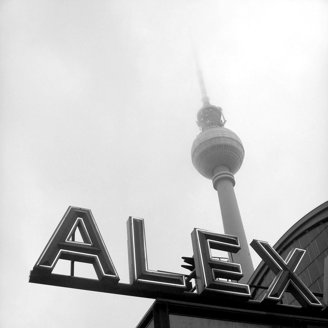 Alex im Nebel