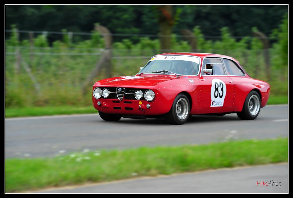 Alfa on Classic Days 2010