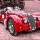 Alfa Romeo 6C 2500 ss Roadster (BJ 1939) -2