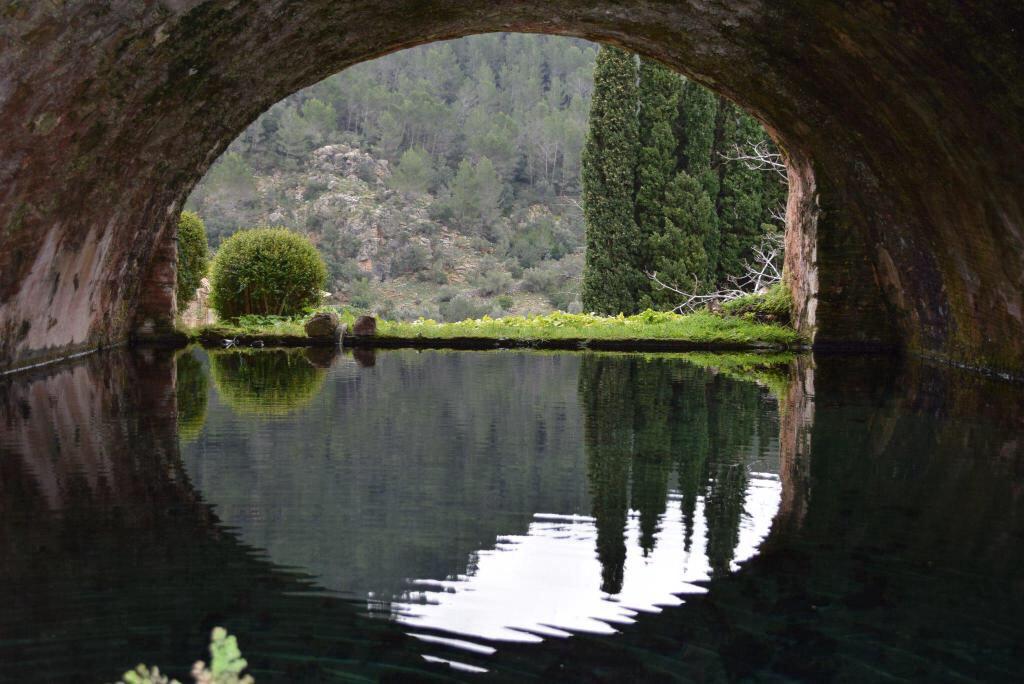 Alfabia Garten