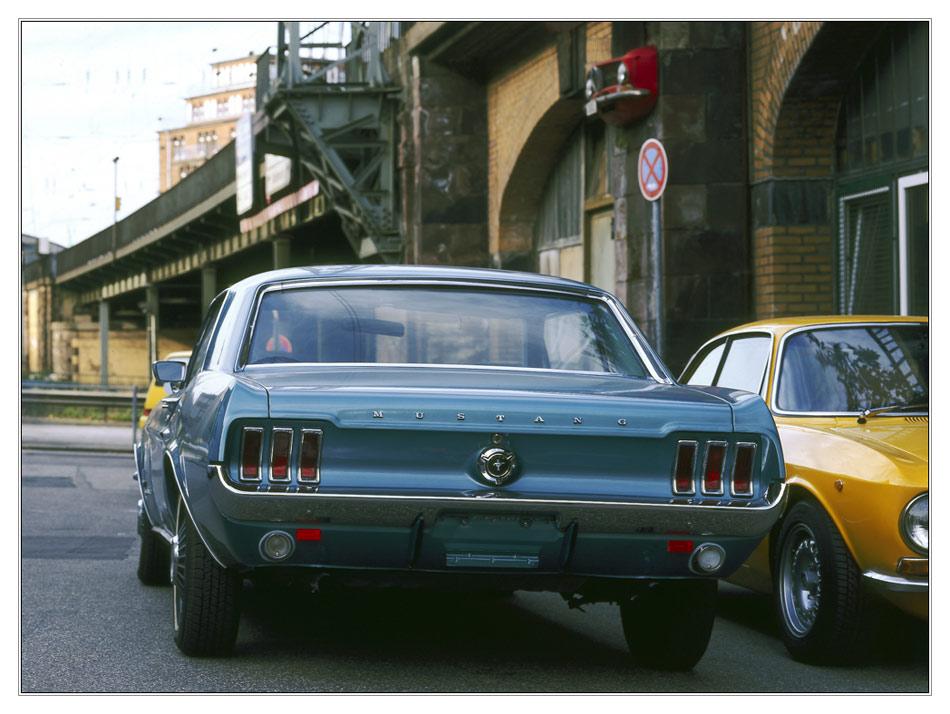 Alfa Mustang/Alfa Alfa