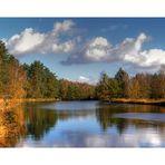 Alftener Flatt im Herbst