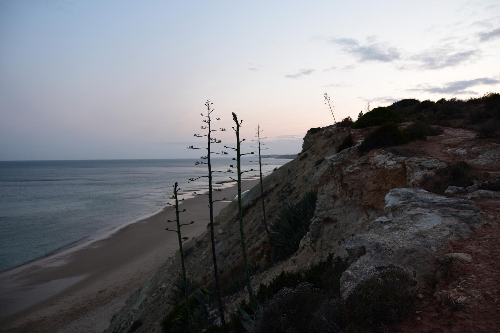 Algarve 2019 (85)