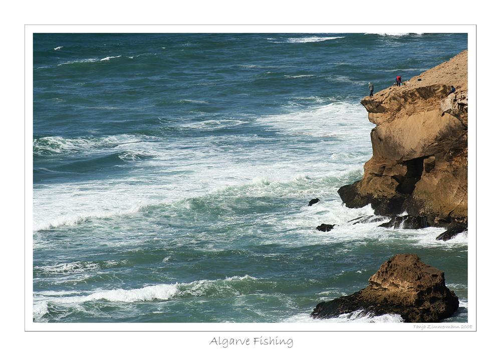 *Algarve Fishing *