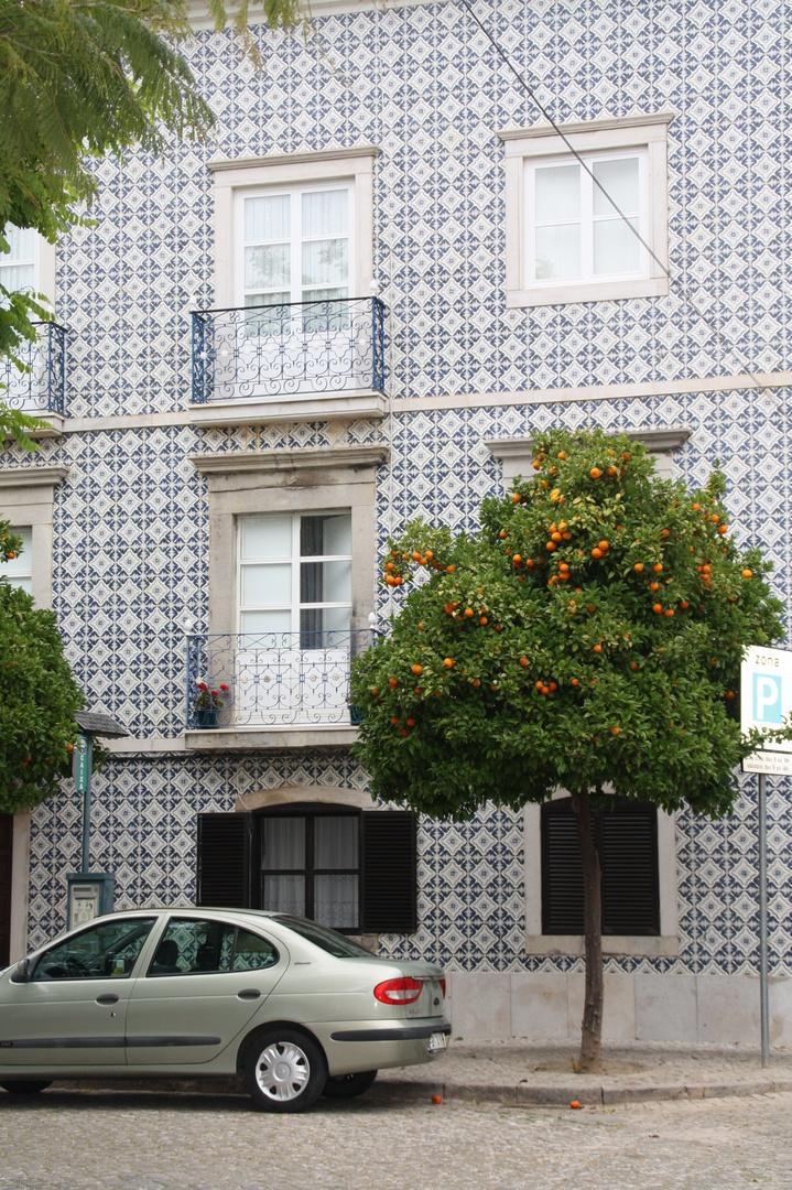 Algarve oranges