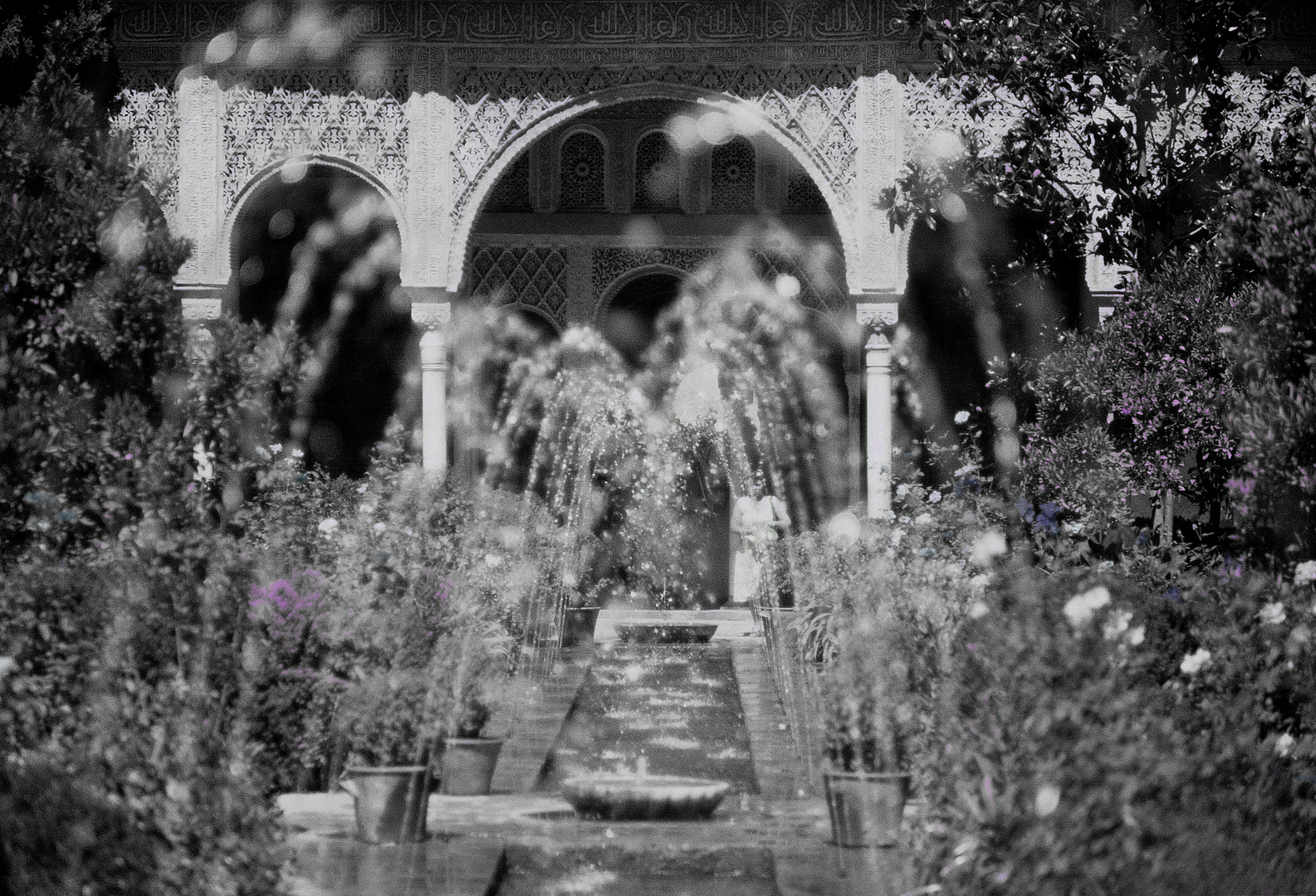 Alhambra 1980
