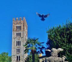 ali di pietra e ali di piume.....