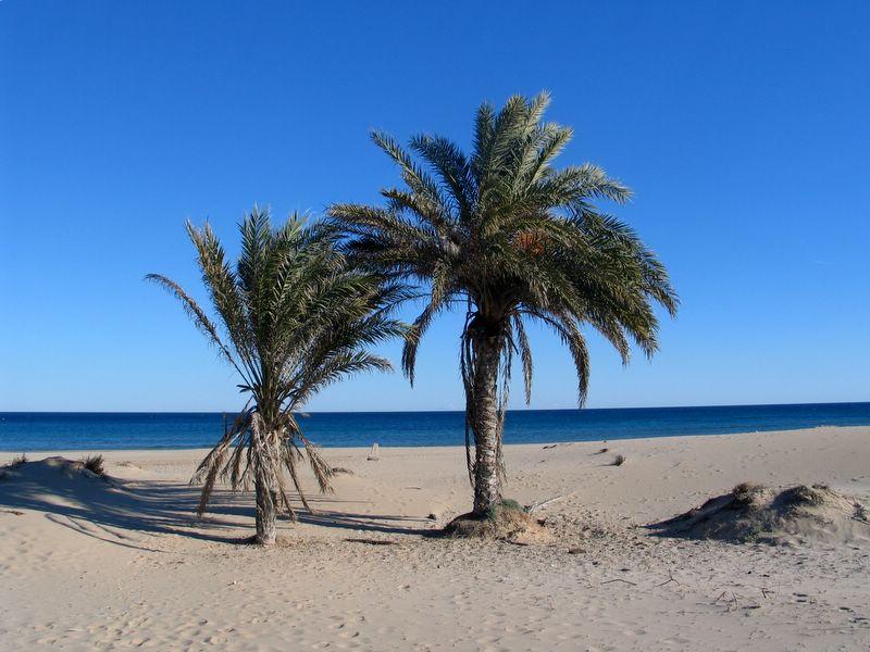 Alicante 01.01.2006