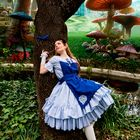 Alice 2