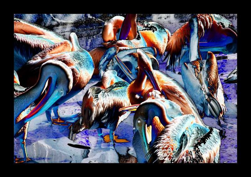Alien Pelikan
