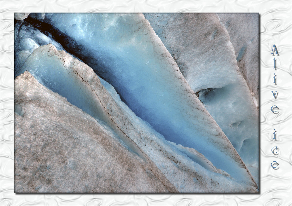 Alive Ice