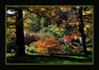 Alle Farben des Herbst...