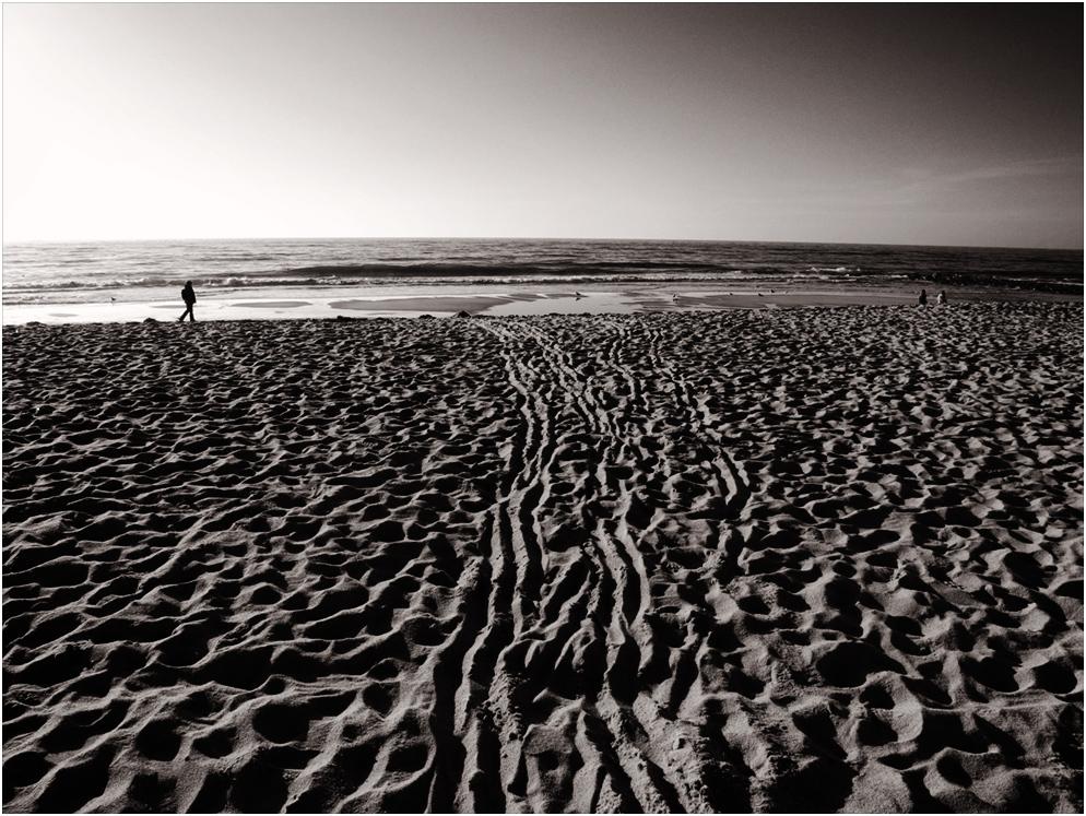 Alle Spuren führen zum Meer