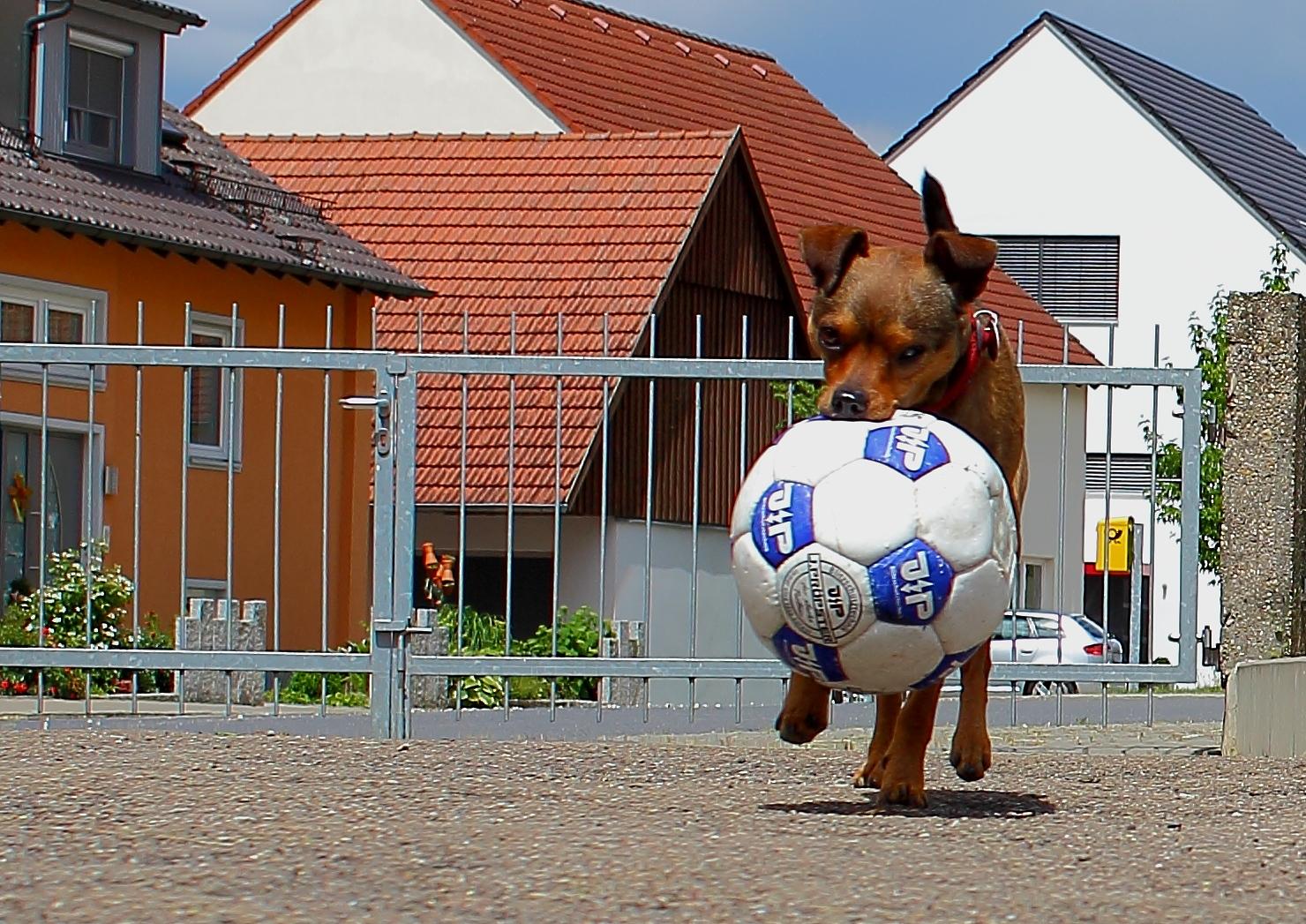 alle zur Seite......muss zur WM...........