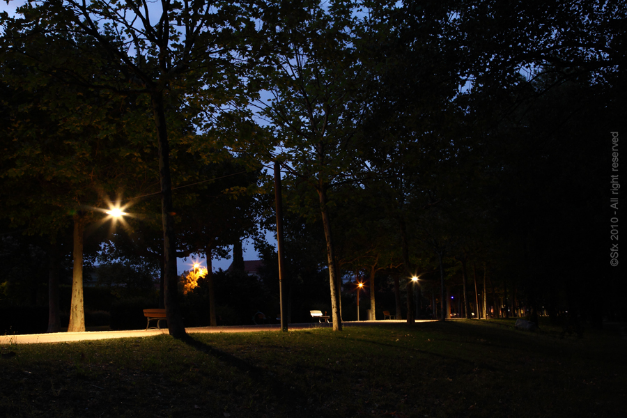 ...Allée nocturne...