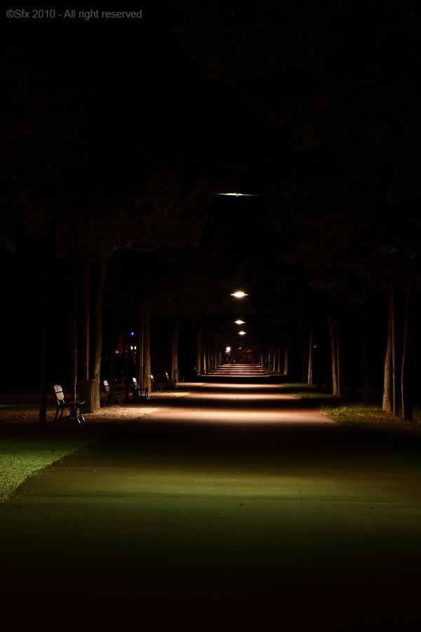 ...Allée nocturne (Version 2)...