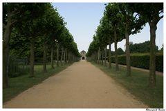 Allee Römerpark Xanten