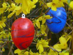 Allen FC-lern wünsche ich ein frohes Osterfest