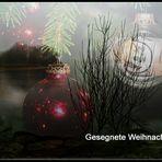 Allen FClern ein frohes, besinnliches Weihnachtsfest und einen guten Start ins Neue Jahr.