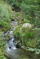 Allerheiligen Wasserfälle 3