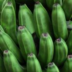 Alles Banane ...