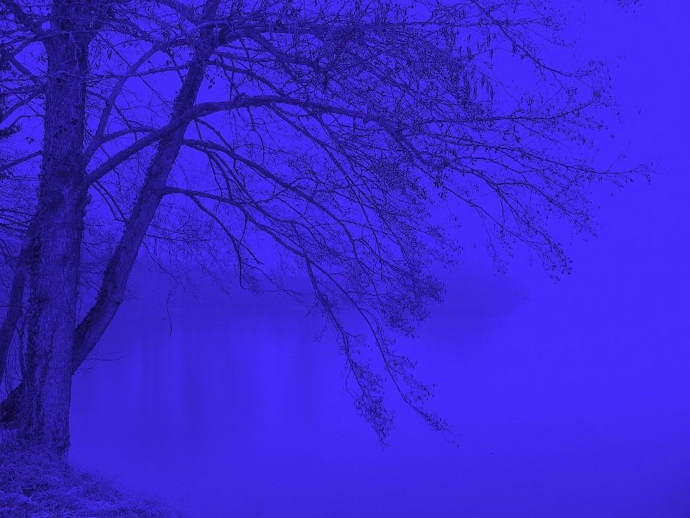 alles grau in grau?....nö....alles blau in blau (reload)