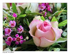 Alles Gute zum Valentinstag :-)