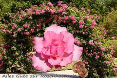Alles Gute zur Rosenhochzeit