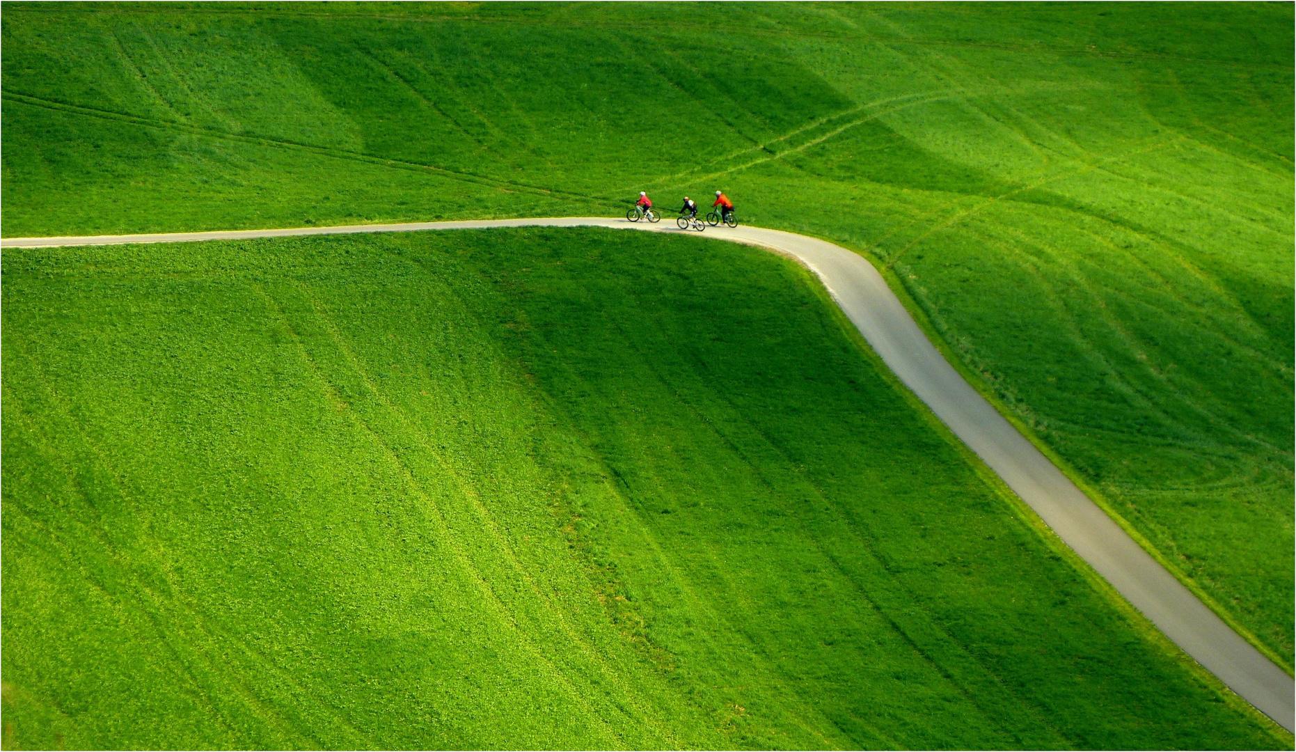 Alles Im Grünen Bereich Foto Bild Sport Grün Natur Bilder Auf