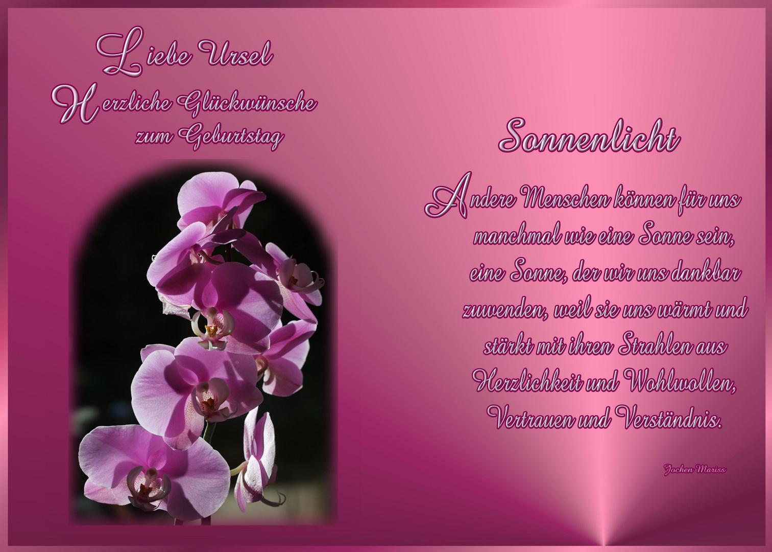 Alles Liebe zum Geburtstag Foto & Bild   gratulation und
