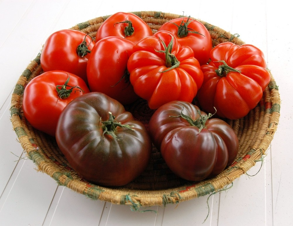 alles Tomate