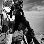 Allevatore beduino