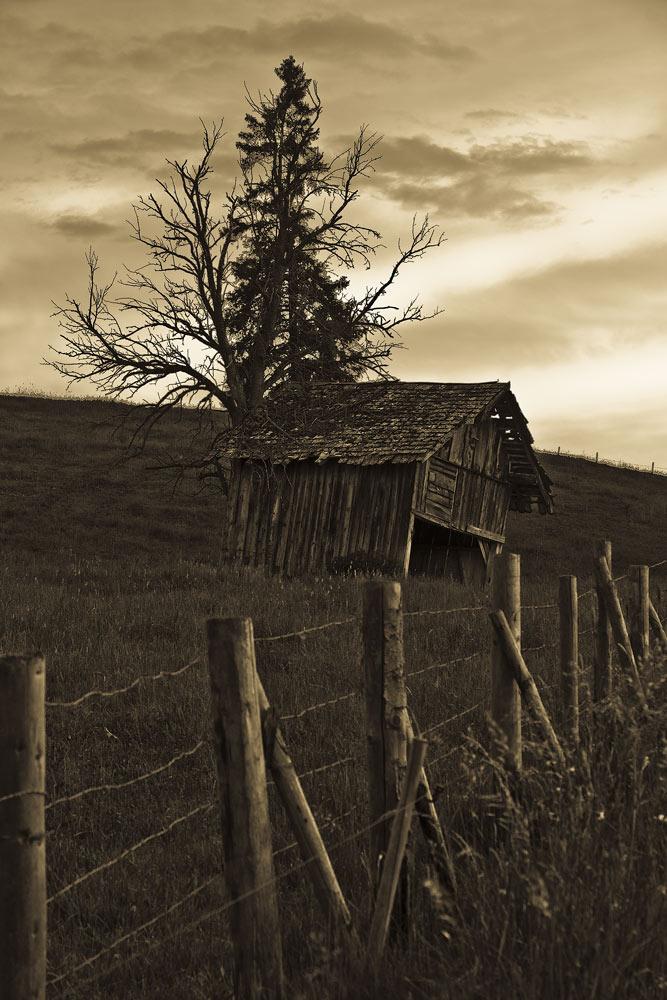 Allgäu Hütte