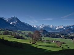 Allgäuer Alpen im Hintergrund