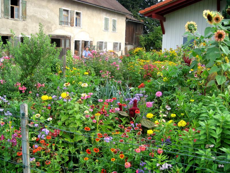 Allgäuer Bauerngarten im Frühherbst Foto & Bild | pflanzen, pilze ...