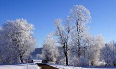Allgäuer Winter 1