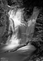 Allhallows Waterfalls in the black forest V
