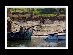Alltag am Nil 10
