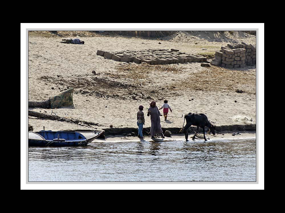 Alltag am Nil 14