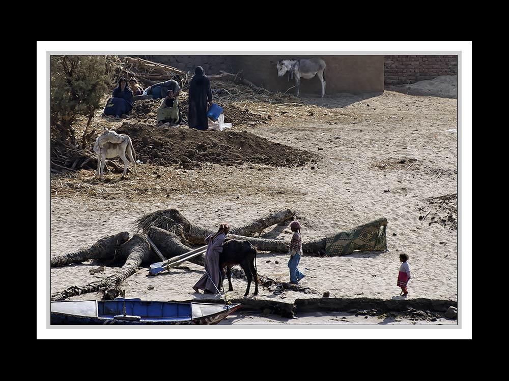 Alltag am Nil 16