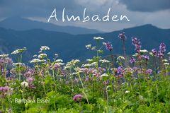 Almbaden - Allgäuer Alpen. Aufstieg Rappenseehütte